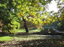 Káprázatos színek a Tiszakürti Arborétumban