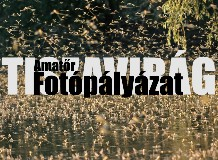 Tiszavirág fotópályázat