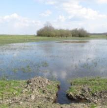 Vízvisszatartás és vízkormányzás a Kerülő- éren