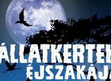 Állatkertek Éjszakája a Tisza-tavi Vízi Sétányon