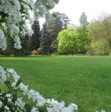 Arborétumok napja a HNPI Tiszakürti Arborétumában