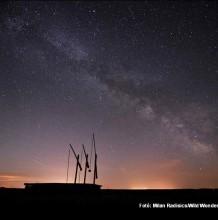 Csillagséta a Hortobágyi Vadasparkban