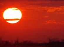 Föld napi madarásztúra és csillagséta Hortobágy-Halastón