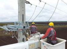 Jelentős előrelépés a hazai áramhálózati madárvédelemben