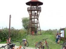 Kerékpártúra Hortobágy- Halastó területén